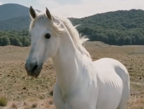 Shadowfax, the Lord of all Horses, Passes into the West
